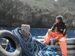 boatman a la joaquin bordado