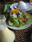 organic green salad and honey mustard dressing